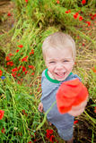 Cute boy in field with red poppies Royalty Free Stock Image