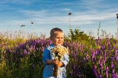 Cute boy with flowers royalty free stock image