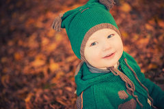 Cute boy in forest Royalty Free Stock Images