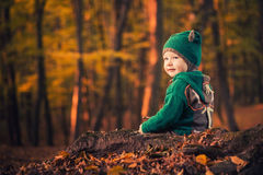 Cute boy in forest Stock Images