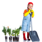 Cute boy gardener. Planting seeds and seedlings of tomatoes and vegetable.  on the white background stock images