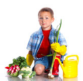 Cute boy gardener. Cute preschool boy gardener. Isolated on the white background Stock Photo