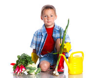 Cute boy gardener. Cute preschool boy gardener. Isolated on the white background royalty free stock photos