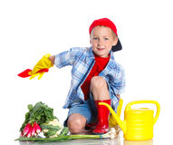 Cute boy gardener. Cute preschool boy gardener. Isolated on the white background royalty free stock images