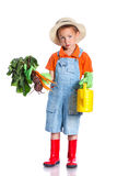 Cute boy gardener. Cute preschool boy gardener. Isolated on the white background royalty free stock photo