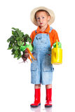 Cute boy gardener. Cute preschool boy gardener. Isolated on the white background Stock Images