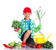 Cute boy gardener. Cute preschool boy gardener. Isolated on the white background Royalty Free Stock Photos