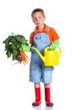 Cute boy gardener. Cute preschool boy gardener.  on the white background Royalty Free Stock Photos