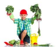 Cute boy gardener Royalty Free Stock Images