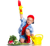 Cute boy gardener. Cute preschool boy gardener.  on the white background Royalty Free Stock Photo