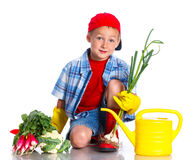 Cute boy gardener. Cute preschool boy gardener.  on the white background Stock Photos