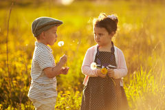 Cute boy and girl on summer field Royalty Free Stock Photo