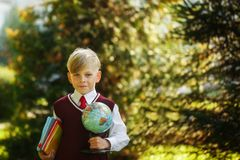Cute boy going back to school. Child with books and globe on first school day stock photo