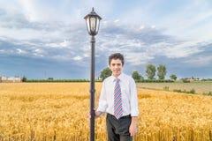 Cute boy in a golden wheat field stock photos