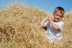 Cute boy in haystack Stock Images