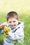 Cute boy with heavy bunch of grapes Royalty Free Stock Images