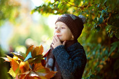 Beautiful little boyl happy playing with fallen leaves Stock Photography