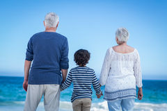 Cute boy holding his grandparents hands Stock Photography