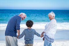 Cute boy holding his grandparents hands Stock Image