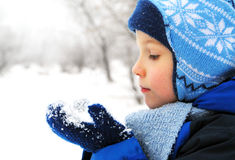 Cute boy holds snow, winter concept Royalty Free Stock Image