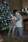 Cute boy hugs a toy deer. Near the Christmas tree Royalty Free Stock Photography