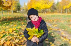 Cute boy in jacket holds a bouquet of autumn yellow leaves against the background of an autumn park Stock Image