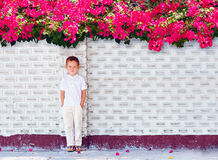 Cute boy kid standing near blooming wall Royalty Free Stock Image