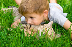 Cute boy with a kitten Royalty Free Stock Images