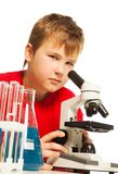 Cute boy in the lab Royalty Free Stock Photos