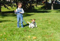 Cute boy looking at his playful dog trying to run away on leash. Two friends playing at park lawn royalty free stock photos