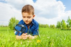 Cute boy with magnifier lays on the green grass Stock Photos