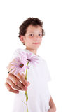 Cute boy offering flowers Royalty Free Stock Photography