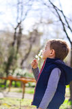 Cute boy outdoor at a spring time. Beautiful blond  fashion little boy touching beautiful blooming tree at spring time Stock Photos