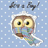 Cute boy owl Royalty Free Stock Images