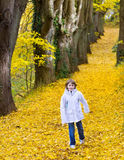 Cute boy in park on road with yellow autumn leafs Stock Photo