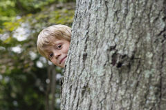 Cute Boy Peeking From Behind Tree Royalty Free Stock Photos