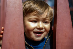 A cute boy peers his head between some wooden bars Royalty Free Stock Photography