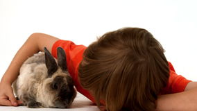 Cute boy with pet rabbit stock footage
