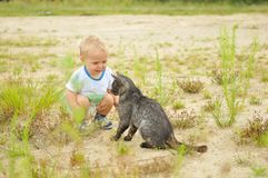 Cute boy playing with a cat Stock Image