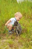 Cute boy playing with a cat Stock Photo