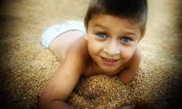 Cute boy playing at farm in wheat grain seeds Royalty Free Stock Image