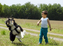 Cute boy playing fetch with his dog. Cute little boy playing fetch with his friend dog outdoor royalty free stock photos