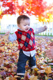 Cute Boy Playing in Leaves Stock Image