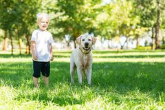 Cute boy playing in the park with a dog stock image