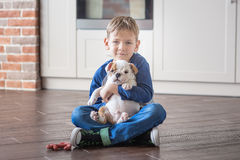 Cute boy playing with puppy english bulldog royalty free stock photography