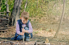 Cute Boy Playing at the Woodland During Autumn Royalty Free Stock Image