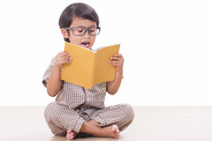 Cute boy is reading a book Royalty Free Stock Photo