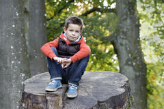 Cute boy seated on a trunk in the park Stock Photography