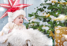 Cute boy sitting in the Christmas basket Stock Photography