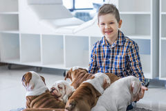 Cute boy sitting on the floor with the puppies English bulldog Royalty Free Stock Photos